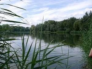 Bachgrundsee